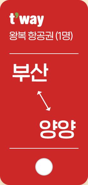 왕복 항공권(1명) 부산 양양